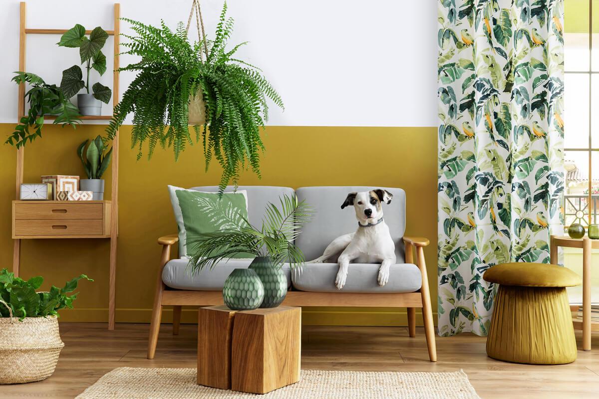 Jak dobrać zasłony do koloru ścian?